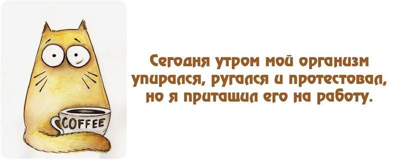 http://forumimage.ru/uploads/20180906/153625615152396834.jpg