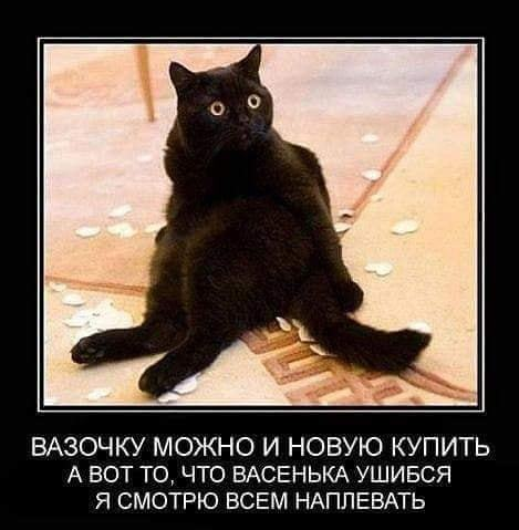 http://forumimage.ru/uploads/20180928/15381666079688982.jpg