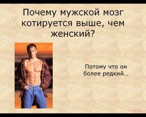 http://forumimage.ru/uploads/20180928/153816661190801031.jpg