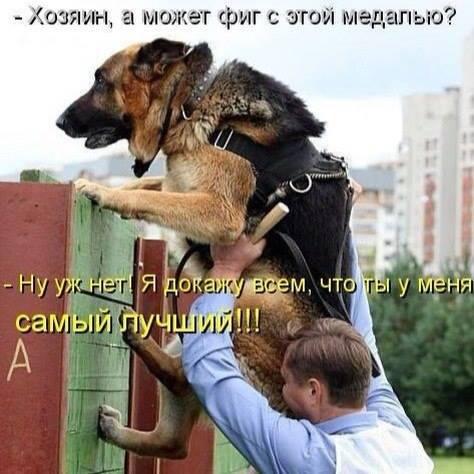 http://forumimage.ru/uploads/20181003/153859519866116184.jpg