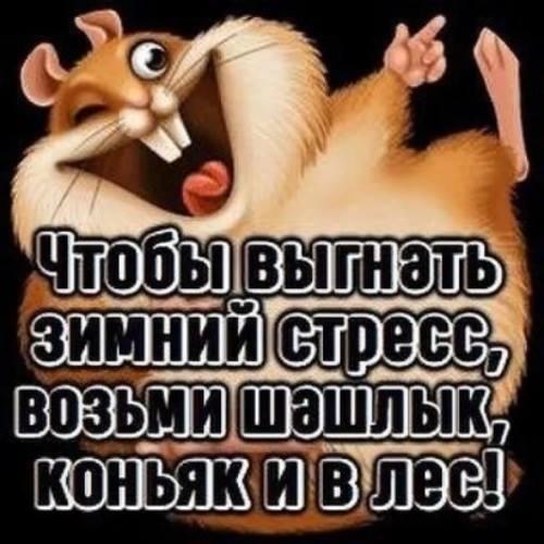http://forumimage.ru/uploads/20181005/153873874506752596.jpg