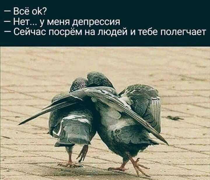 http://forumimage.ru/uploads/20181006/153878405167461898.jpg