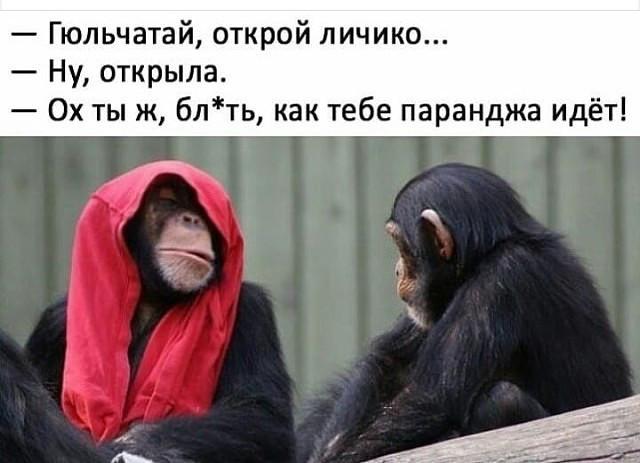 http://forumimage.ru/uploads/20181009/153906427946679154.jpg