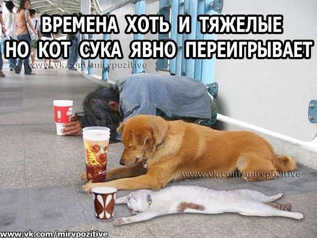 http://forumimage.ru/uploads/20181011/153926237253301355.jpg