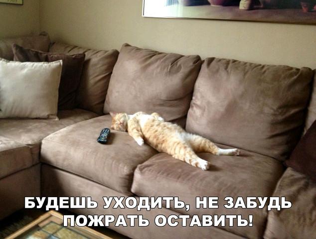 http://forumimage.ru/uploads/20181013/153946258857224836.jpg