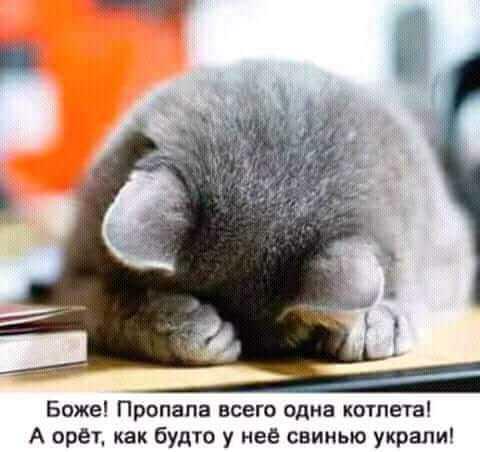 http://forumimage.ru/uploads/20181018/153986021090726331.jpg