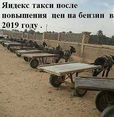 http://forumimage.ru/uploads/20181022/154021714030902323.jpg