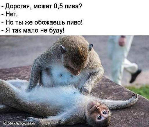 http://forumimage.ru/uploads/20181024/154037442321098340.jpg