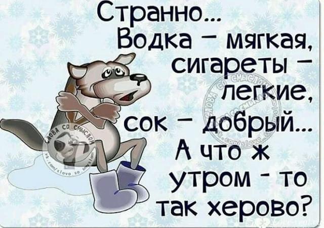 http://forumimage.ru/uploads/20181029/154084342846533486.jpg