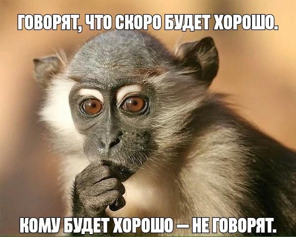 http://forumimage.ru/uploads/20181030/154091293024892564.jpg