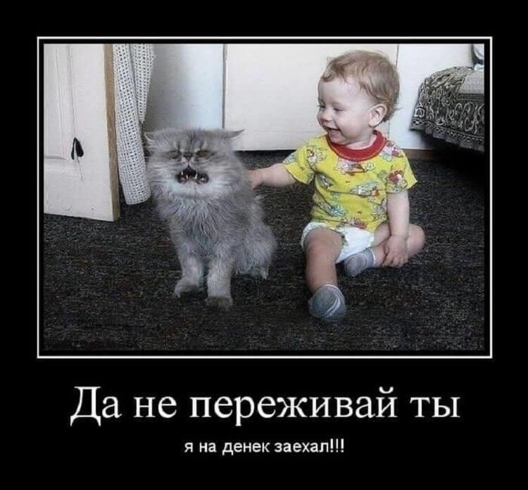 http://forumimage.ru/uploads/20181101/154105954972436384.jpg