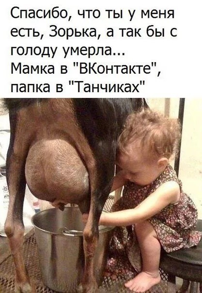 http://forumimage.ru/uploads/20181101/154109301424609011.jpg