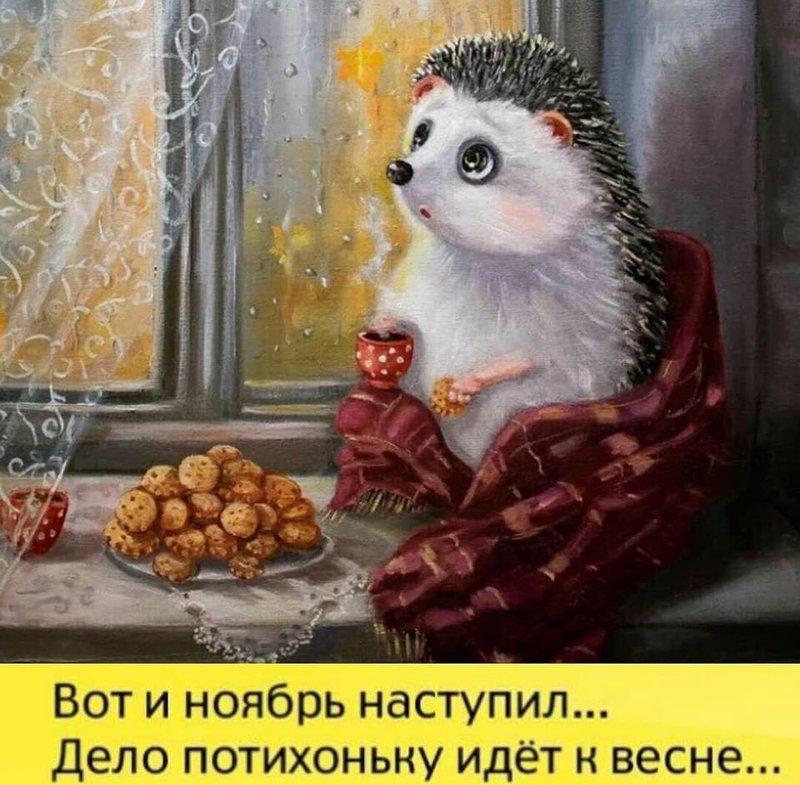 http://forumimage.ru/uploads/20181105/15414215096321779.jpg