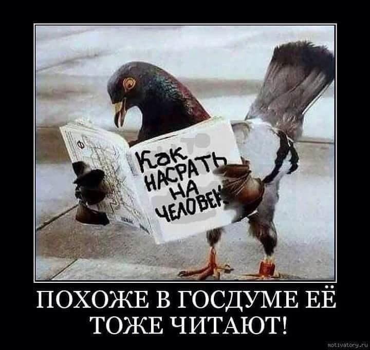 http://forumimage.ru/uploads/20181106/154151855138396149.jpg