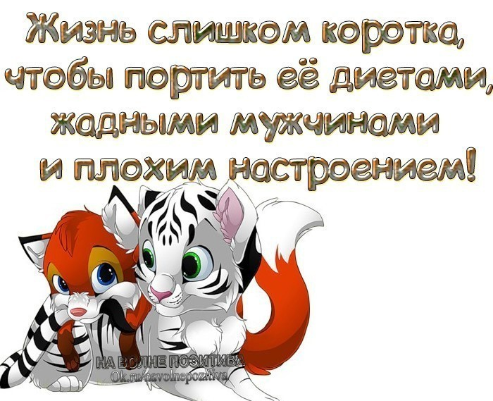 http://forumimage.ru/uploads/20181107/154157263050078467.jpg
