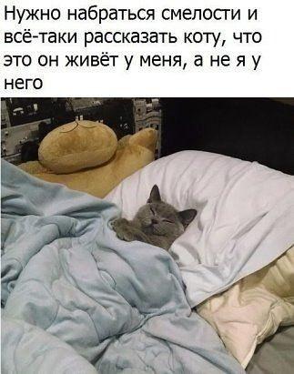http://forumimage.ru/uploads/20181114/154222238877372426.jpg