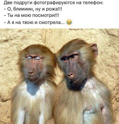 http://forumimage.ru/uploads/20181115/154227325629811561.jpg