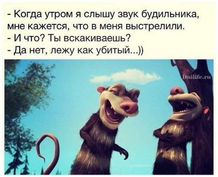 http://forumimage.ru/uploads/20181124/154307800750169435.jpg