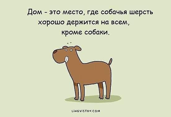 http://forumimage.ru/uploads/20181128/154336499640054299.jpg