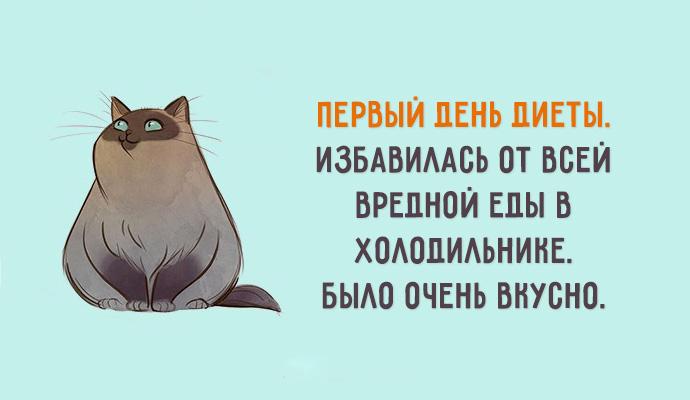 http://forumimage.ru/uploads/20181211/154449667662979180.jpg