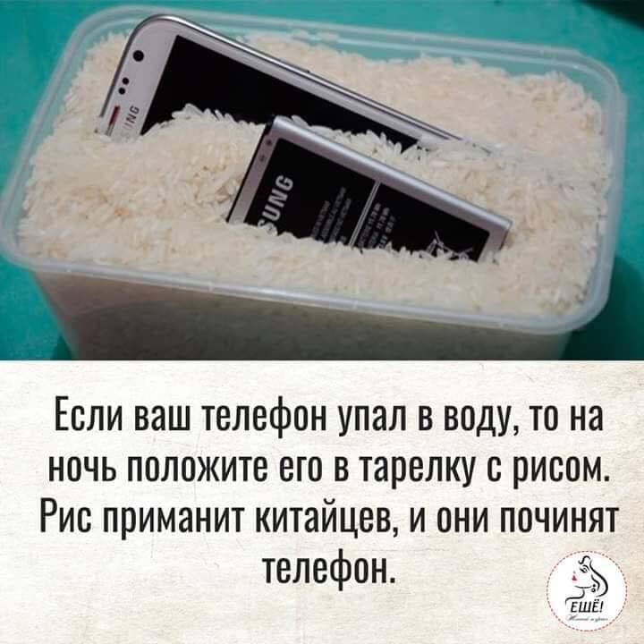 http://forumimage.ru/uploads/20181217/154502994440367561.jpg