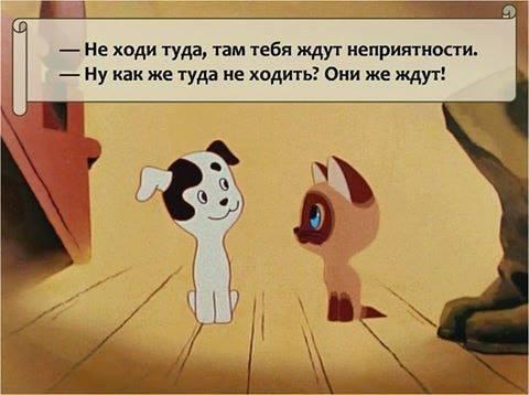http://forumimage.ru/uploads/20181217/154502995725667131.jpg