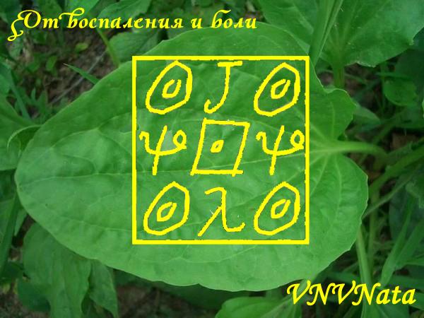 http://forumimage.ru/uploads/20181219/154522617202589574.jpg