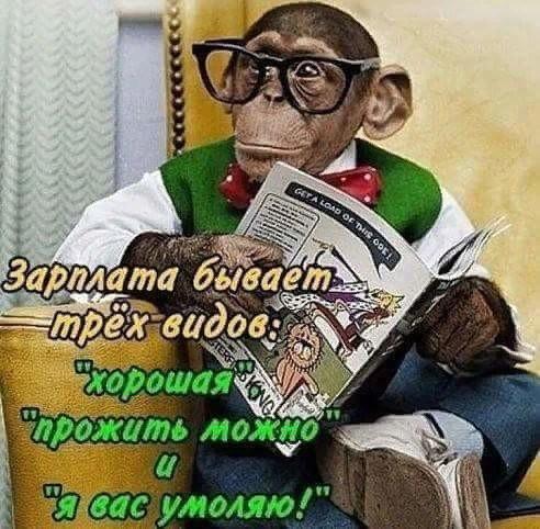 http://forumimage.ru/uploads/20190112/154732927644943585.jpg