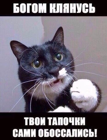 http://forumimage.ru/uploads/20190115/15475611828691943.jpg
