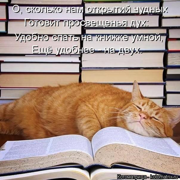 http://forumimage.ru/uploads/20190401/155410787572576472.jpg