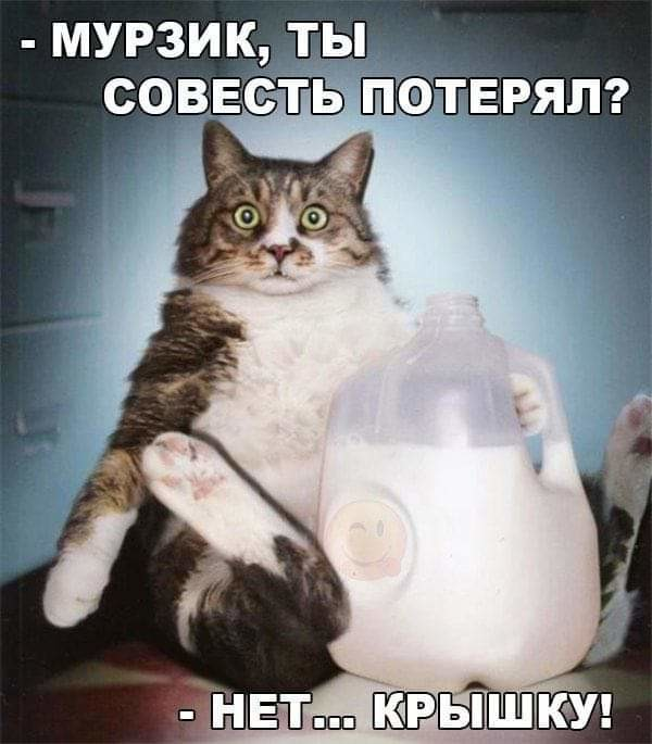 http://forumimage.ru/uploads/20190408/155470186512857317.jpg