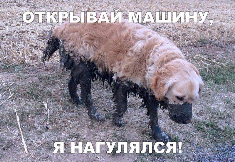http://forumimage.ru/uploads/20190424/155608925421884172.jpg