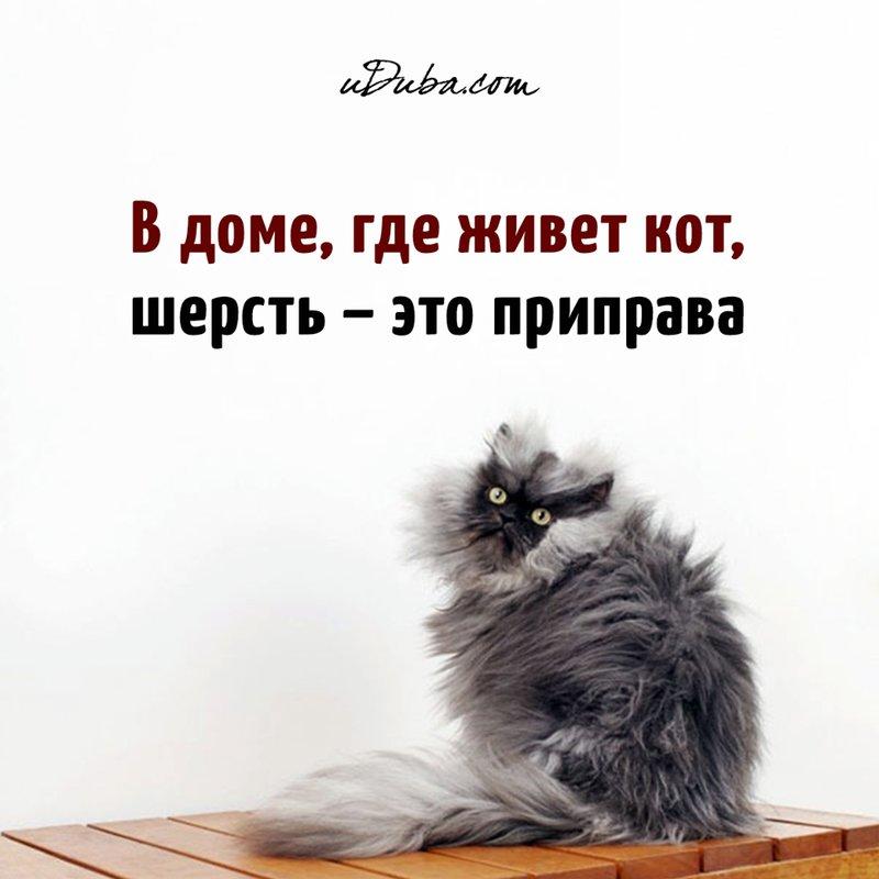 http://forumimage.ru/uploads/20190424/155608926656734915.jpg