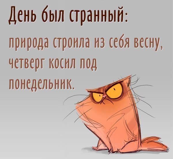http://forumimage.ru/uploads/20190502/155681624832365784.jpg