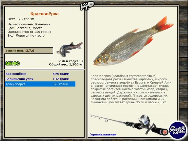 рыбалка для друзей клевалка