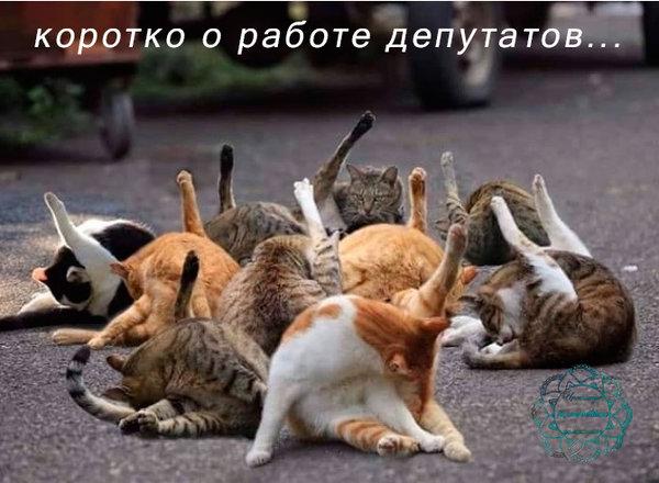 http://forumimage.ru/uploads/20190601/155936590799273110.jpg