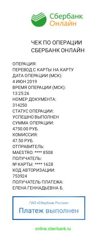 Новосибирск! Чей колли?