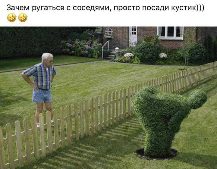 http://forumimage.ru/uploads/20190615/156057103079121557.jpg