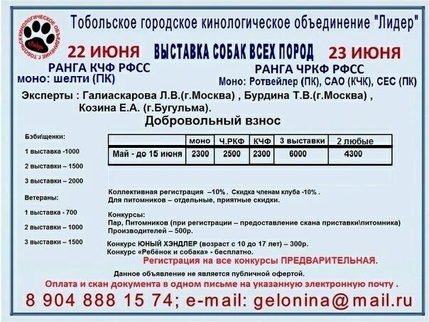 22.06.2019 г. Тобольск, моно шелти ПК, 2хСАС (ЧРКФ, КЧФ)