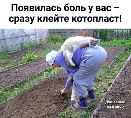 http://forumimage.ru/uploads/20190621/156114876708442782.jpg