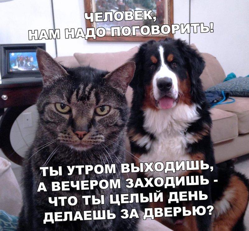 http://forumimage.ru/uploads/20190626/156155213910392531.jpg