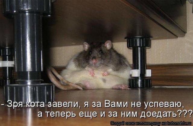 http://forumimage.ru/uploads/20190627/156165097171012795.jpg