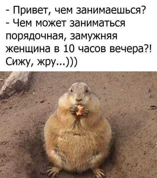 http://forumimage.ru/uploads/20190701/156200542923587926.jpg