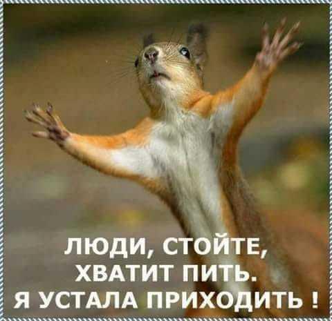 http://forumimage.ru/uploads/20190703/15621896187648522.jpg