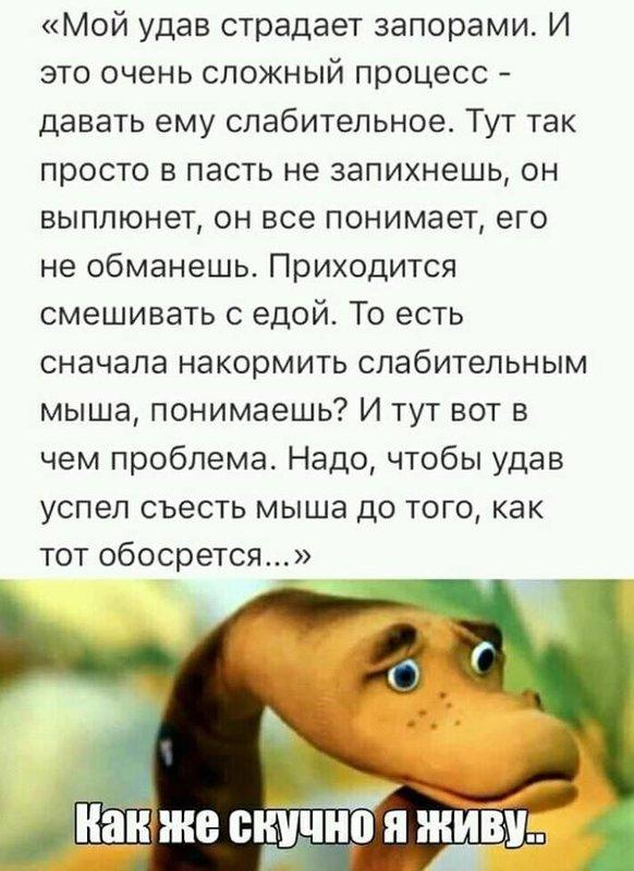 http://forumimage.ru/uploads/20190808/156525242428285964.jpg