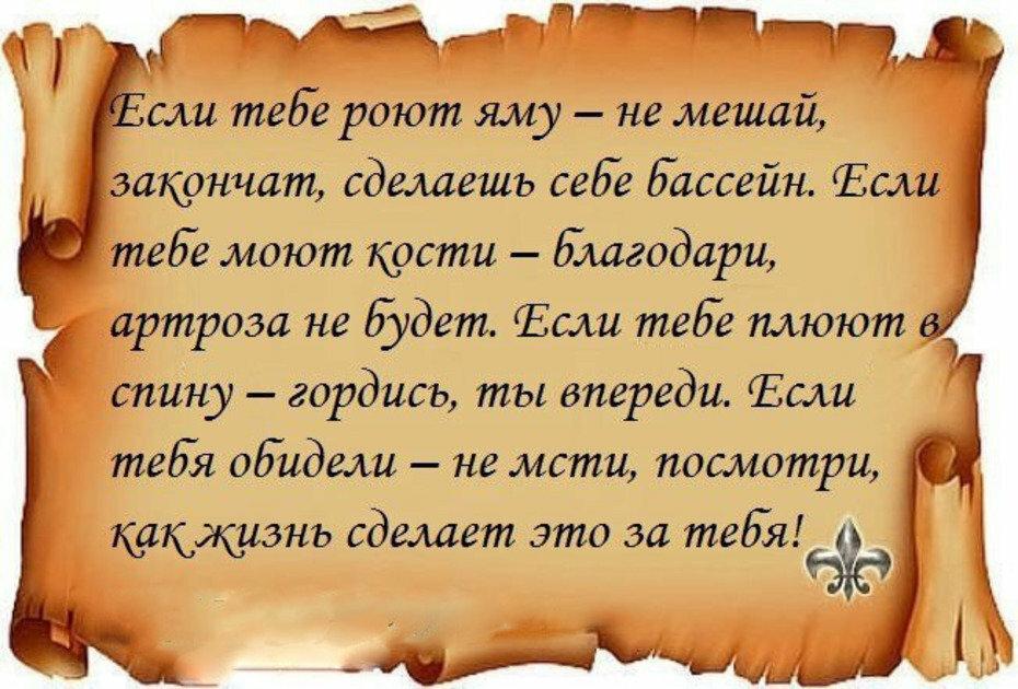 Цитаты, афоризмы..