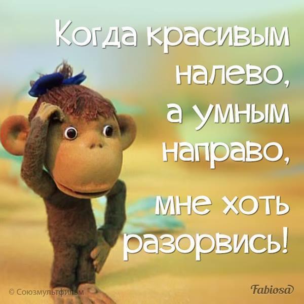 http://forumimage.ru/uploads/20190922/156918518953606259.jpg
