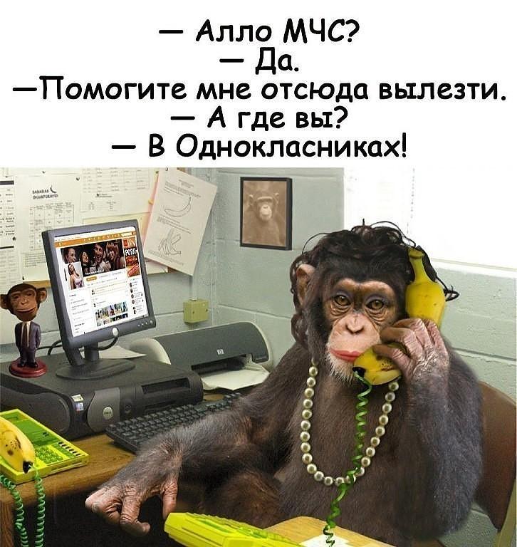 http://forumimage.ru/uploads/20190922/156918538240097111.jpg