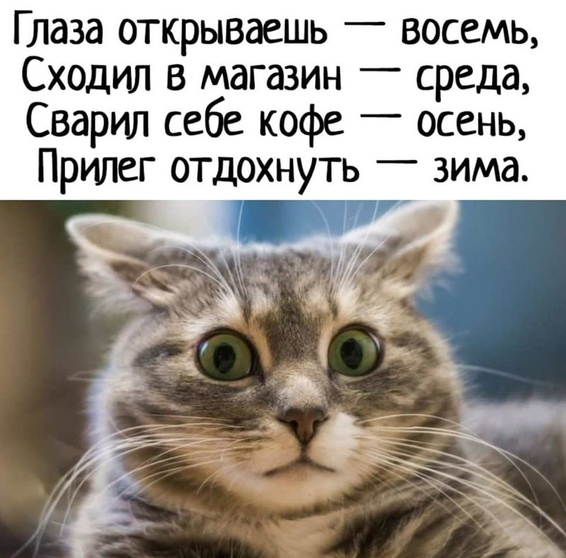 http://forumimage.ru/uploads/20190922/156918540481644778.jpg