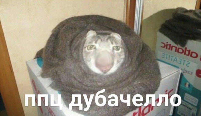 http://forumimage.ru/uploads/20190926/156950893154687550.jpg